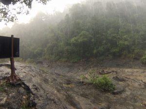 Monsunregen