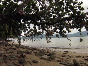 Blick von der kleinen Insel auf Koh Chang